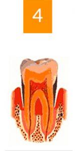 reception du Docteur Richard Garrel au Cabinet dentaire a Avignon dans le Vaucluse. pose d Implant dentaire et pose d'implants a avignon dans le vaucluse